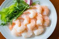 Shrimps. On a white plate with dressing Royalty Free Stock Photography
