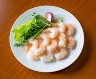 Shrimps. On a white plate with dressing Royalty Free Stock Photos