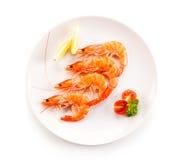 Shrimps on white plate. Group of shrimps on white background royalty free stock photos