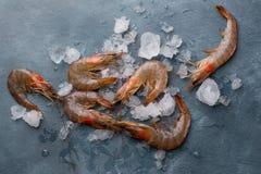 Shrims frais délicieux image libre de droits