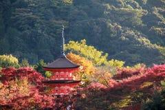 Shrine in Autumn stock images