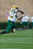 Shrine Bowl of the Carolinas Stock Photo