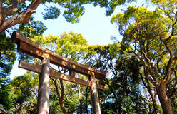 Shrine Gate in Tokyo Japan. Torii Shrine Gate at the Meiji Jingu Shrine surrounded by trees in Springtime in Tokyo Japan Royalty Free Stock Photo