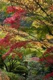 Shrine in Japanese garden Stock Images