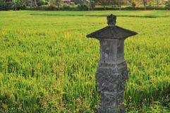 Shrine in Rice paddies near Ubud, Bali, Indonesia Royalty Free Stock Images