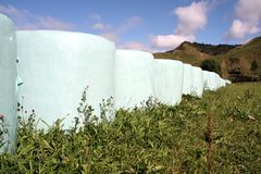 Shrink wrapped hay bales Stock Photo