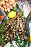 Shripms no gelo. Marisco bonito. Fotos de Stock Royalty Free