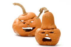 Shriveled pumpkins Stock Image