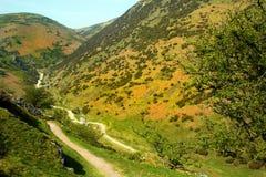 Shropshire Countryside Stock Photos