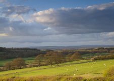 Shropshire countryside farmland Stock Images