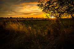 Shropshire Fields in Late Summer. Evening over Lilleshall farmland in late summer in the County of Shropshire, England Stock Image