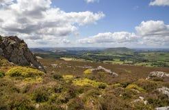 Shropshire heathland, England Royalty Free Stock Photo