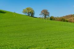 Shropshire krajobraz, Anglia, UK obrazy stock