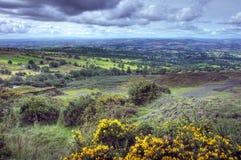Shropshire landscape Stock Images