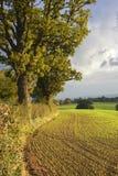 Shropshire-Landschaft im Frühherbst Lizenzfreie Stockfotos