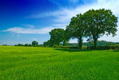 Shropshire Summertime. Colorful image of the Shropshire landscape in summertime Royalty Free Stock Photos