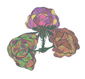 Shrub invented decorative painting rode. Bush floral fantasy element flora Royalty Free Stock Image