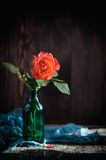 Shrub roses in vase Royalty Free Stock Photos