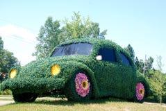 shrub volkswagen жука стоковая фотография