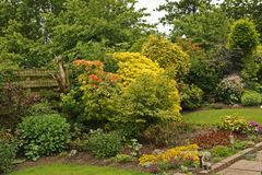 Colourful English Garden. Shrubs and bush's and flowers in a English garden with green lawns dead tree against a rustic fence.A flagged pathway amid a stock photography