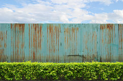 Shrubs with zinc fence on blue sky Stock Photo