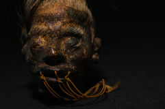 A shrunked human head from ecuador over a dark background Royalty Free Stock Images