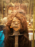 Shrunken Head Royalty Free Stock Images