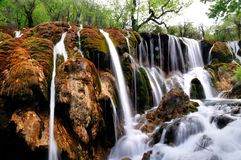 Shu Zheng Waterfall in Jiuzhaigou Stock Photography