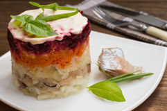 Shuba salad. Cooked beets, carrots, potatoes, onions, herring and mayonnaise. The classic Russian cuisine. Restaurant Stock Photos