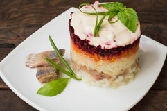 Shuba salad. Cooked beets, carrots, potatoes, onions, herring and mayonnaise. The classic Russian cuisine. Restaurant Stock Photography