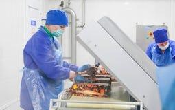 SHUCHIN, WIT-RUSLAND - JANUARI 26, 2015 Vrouwen belast met de verpakking van kaas op een kaasfabriek Royalty-vrije Stock Fotografie