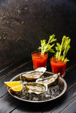Shucked Oysters and Bloody Mary cocktail. Shucked Oysters Fines de Claire and Bloody Mary cocktail on dark background Royalty Free Stock Images