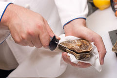 Shucking of oyster Royalty Free Stock Image