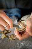 Shucking oysters Royalty Free Stock Photo