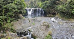 Shuhaipubuwaterval in oerwoud, rgb adobe stock foto's