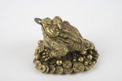 shui de grenouille de feng Image stock