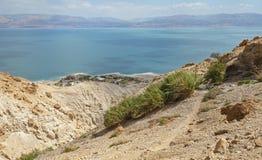 Shulamit Spring Overlooks das Tote Meer in Israel stockfotos