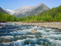 Shumak River Royalty Free Stock Photo