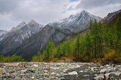 Shumak rzeka w górach Wschodni Sayan Obraz Royalty Free