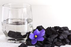 Shungite stones in a glass of water for cleaning and feeding water ,close-up royalty free stock images