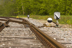 Shunting switch Stock Photography