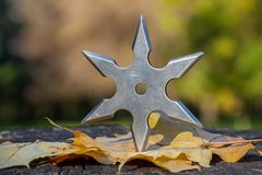Shuriken throwing star, traditional japanese ninja cold weapon. Stuck in wooden background stock photo