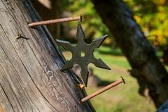 Shuriken throwing star, traditional japanese ninja cold weapon. Stuck in wooden background stock image