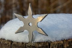 Shuriken throwing star, traditional japanese ninja cold weapon stuck in wooden background.  royalty free stock images