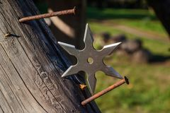 Shuriken throwing star, traditional japanese ninja cold weapon stuck in wooden background.  royalty free stock photography