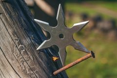 Shuriken throwing star, traditional japanese ninja cold weapon stuck in wooden background.  royalty free stock photo