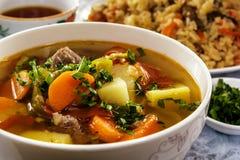 Shurpa con la carne - un plato tradicional de la sopa de verduras de los habitantes de Asia Central primer fotografía de archivo