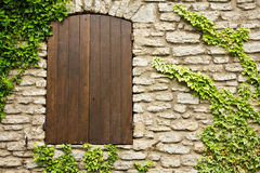 Shutters and Vines Stock Image