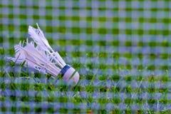 Shuttlecock на зеленой траве Стоковая Фотография