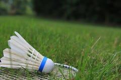 羽毛球小鸟在绿草的Shuttlecock球拍 免版税图库摄影